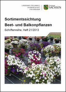 Sortimentssichtung beet und balkonpflanzen for Beet und balkonpflanzen